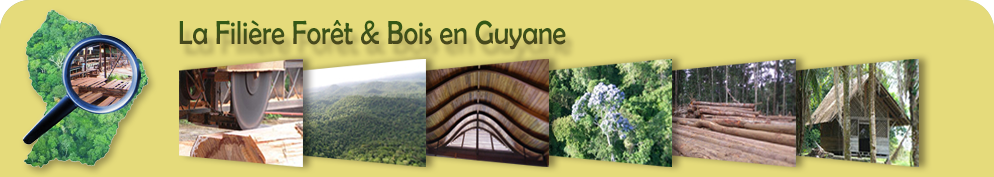 Rencontres amicales guyane
